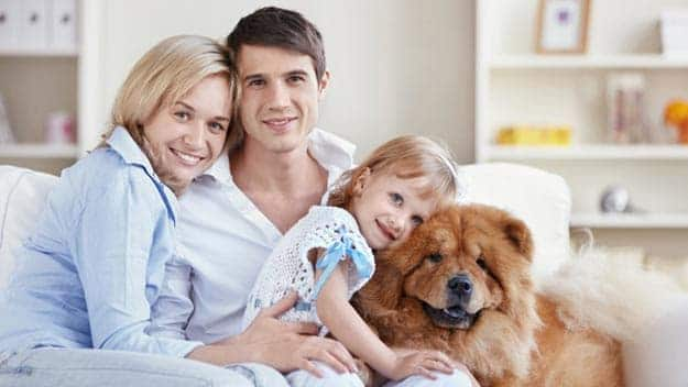 Wills & Trusts dog-young-family Direct Wills West Tilbury